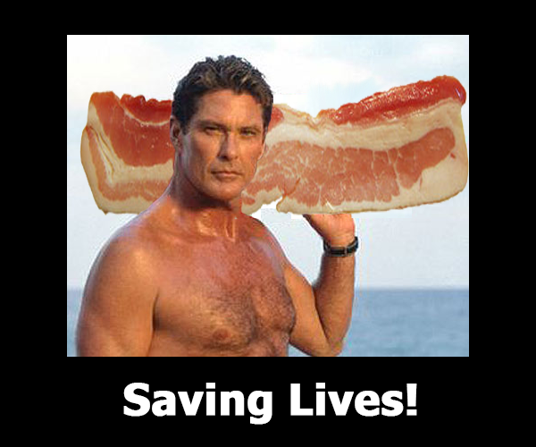 david-hasselhoff-baywatch.png